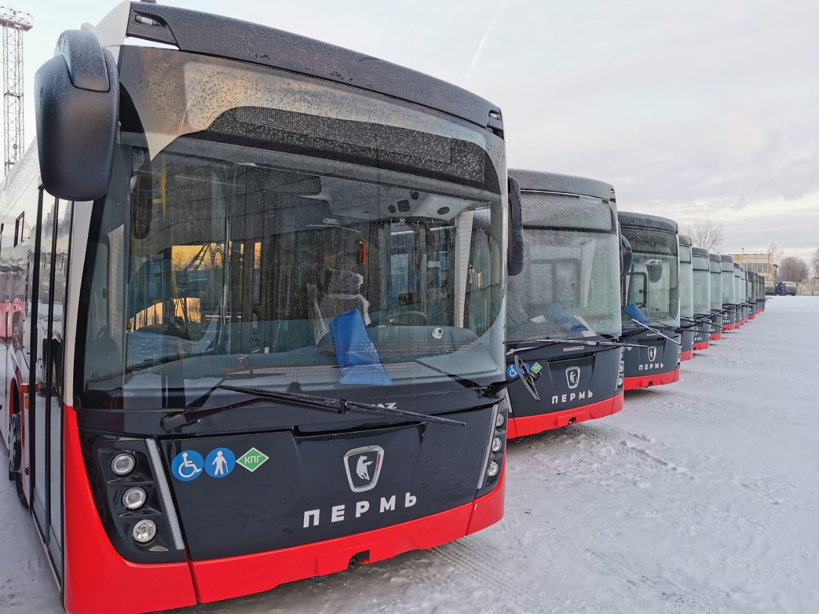 Низкопольные автобусы НЕФАЗ для Перми